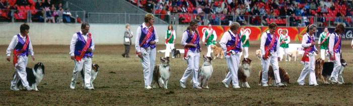 Sydney Royal's Mass Obedience